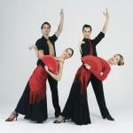 flamenco y olé