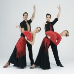 espectáculo de flamenco parejas