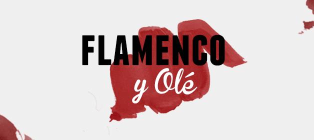 espectaculo-de-flamenco