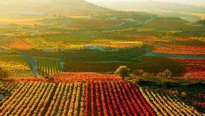 Monologuistas en La Rioja