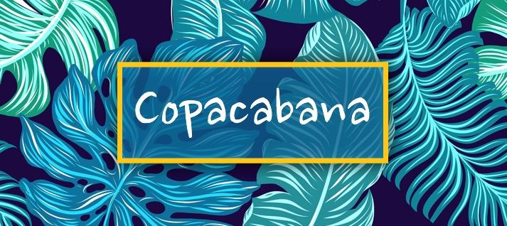 espectaculo capoeira y samba copacabana