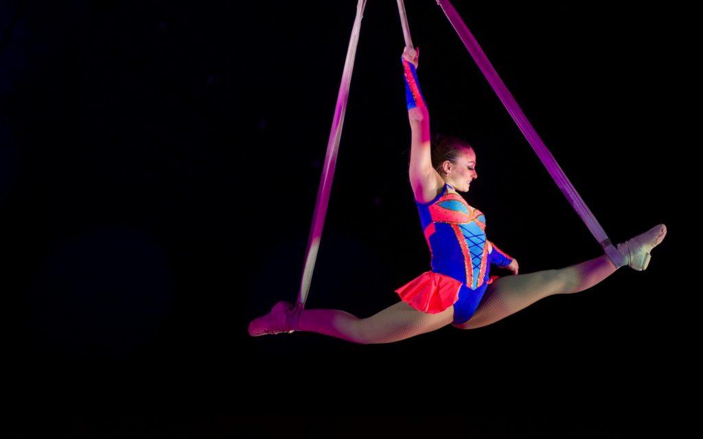 dreams circus