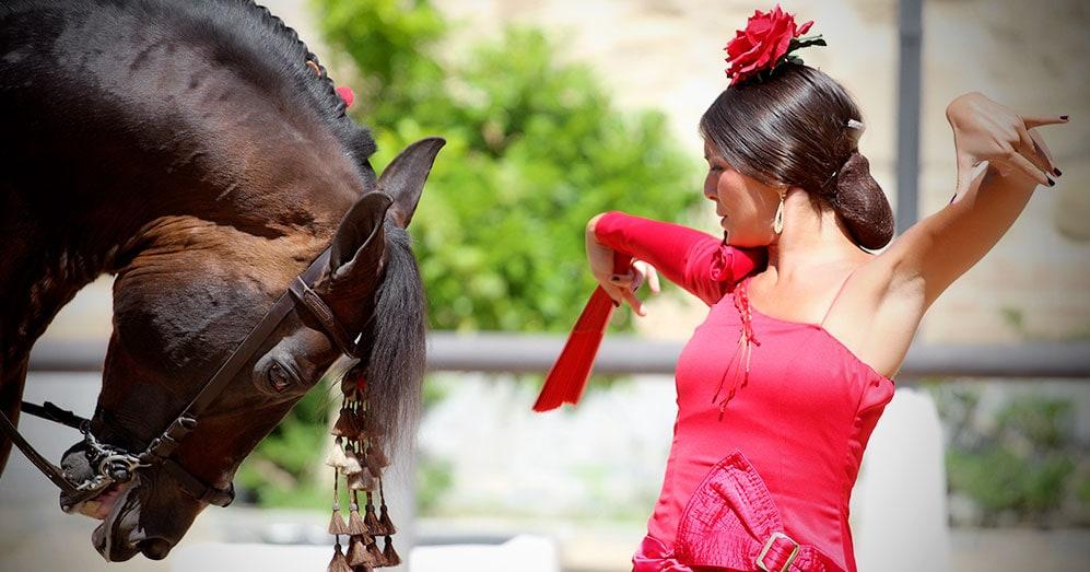Contratar espectáculo flamenco ecuestre